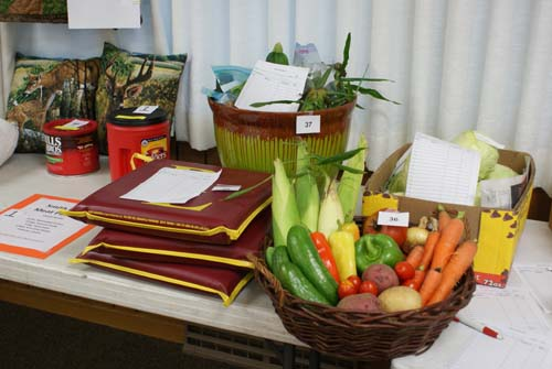 garden produce and stadium cushions available at Good Shepherd fall fest silent auction